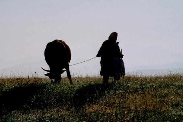 2000-Rumaenien-033