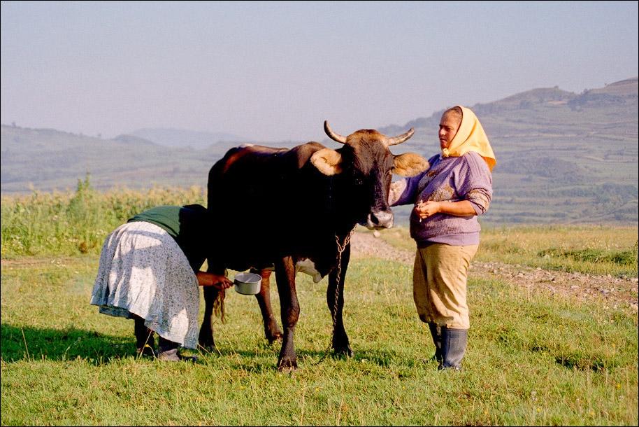 2000-Rumaenien
